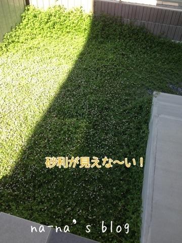 20140614-110334.jpg